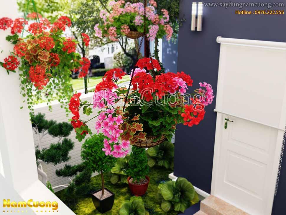 giàn hoa mẫu thiết kế phòng bếp nhà đẹp